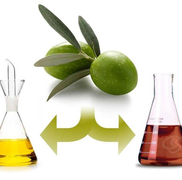Hydroxytyrosol (phytosterols) super antioxidant from olive